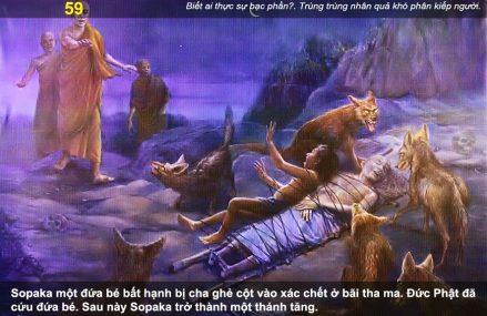 Vua Lưu Ly diệt dòng họ Thích Ca (tiếp)