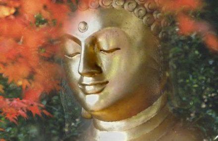 Nhạc Phật giáo Karaoke 103 – Ca ngợi đấng Thế Tôn – Uy Thi Ca