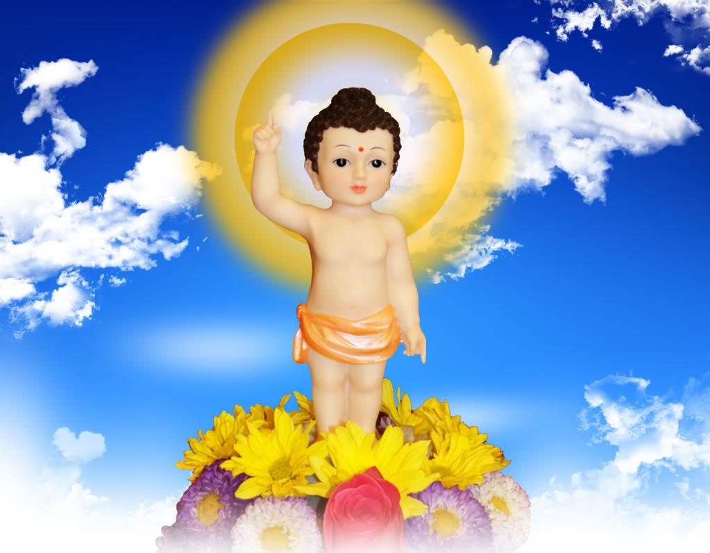 Nhạc Phật giáo Karaoke 336 – Liên khúc Mừng Khánh Đản – Mây đầu hạ