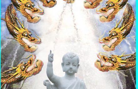 Nhạc Phật giáo Karaoke 408 – Đón mừng ánh đạo – Nguyên Đàm Hữu Nghĩa