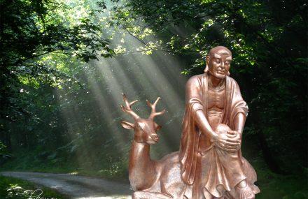 La Hán 16 – Tọa Lộc La hán