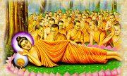 Nhạc Phật giáo Karaoke 430 – Đạo ca nhập diệt – Nguyễn Hiệp