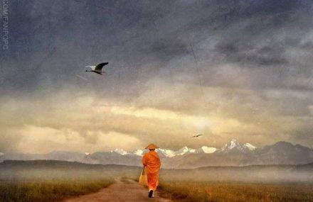 Nhạc Phật giáo Karaoke 429 – Chớ vội tin ai – Nguyên Truyền