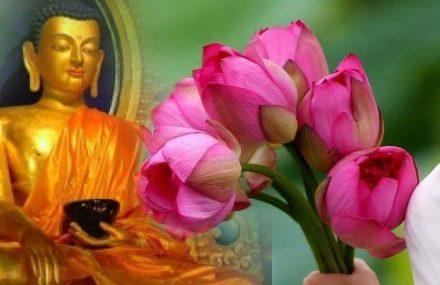 Nhạc Phật giáo Karaoke 460 – Lời kinh Vu Lan – Võ Tá Hân