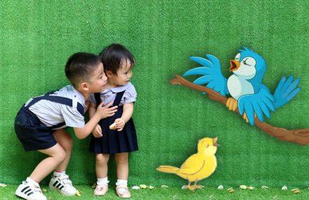 Nhạc Phật giáo karaoke 537 – Tiếng chim Oanh – Thơ: Phan Hồng Liên